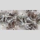 Березакерамика - Декор Джерси белый, плитка для стен