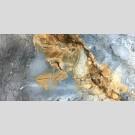 Casa Ceramika - Laurel Grey керамогранит