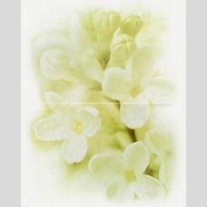 Andrea flower - плитка декоративная панно