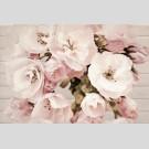 Cersanit - Sakura flowers декор