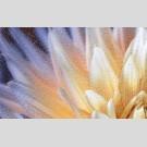 Golden Tile - Fiori И9Б311 декор - панно