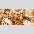 Golden Tile - Sea Breeze Shells Е11311 декор - панно