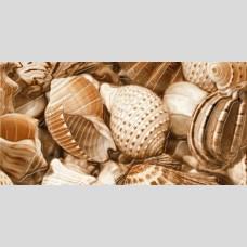 Sea Breeze Shells Е11321 декор - панно