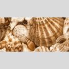 Golden Tile - Sea Breeze Shells Е11331 декор - панно