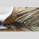 Golden Tile - Wellness 101341 декор